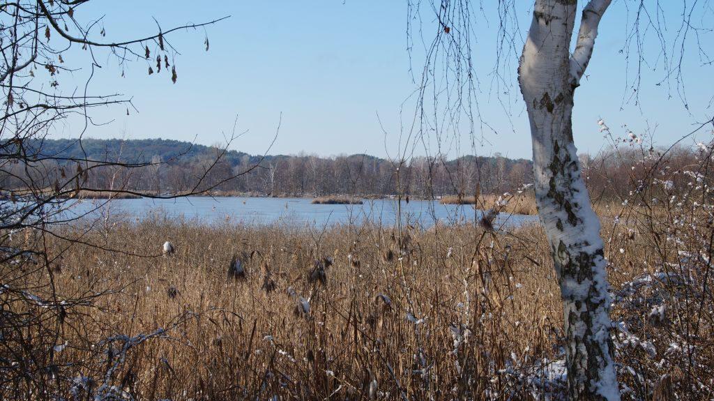 Wernsdorfer See