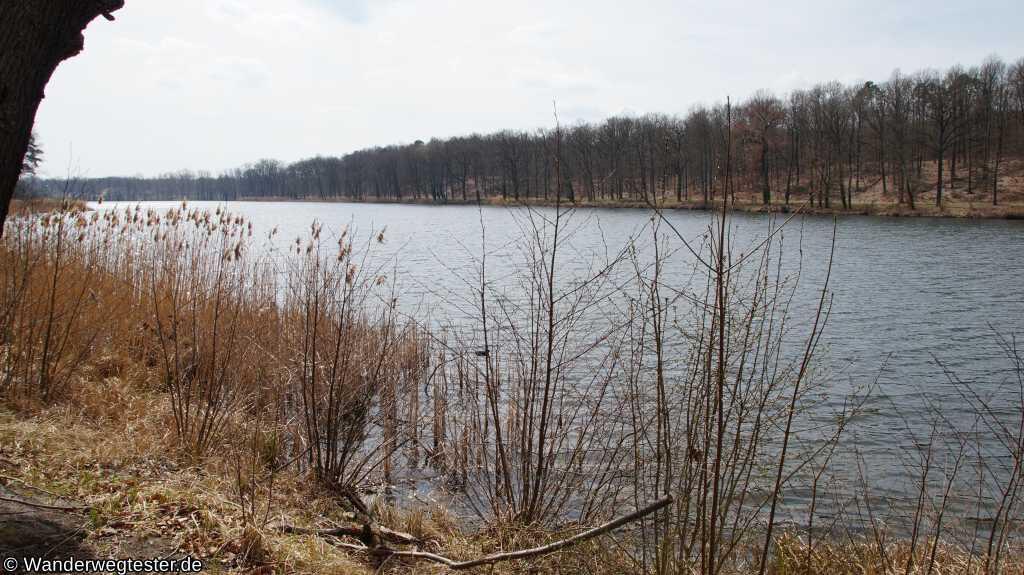 Gohlitzsee