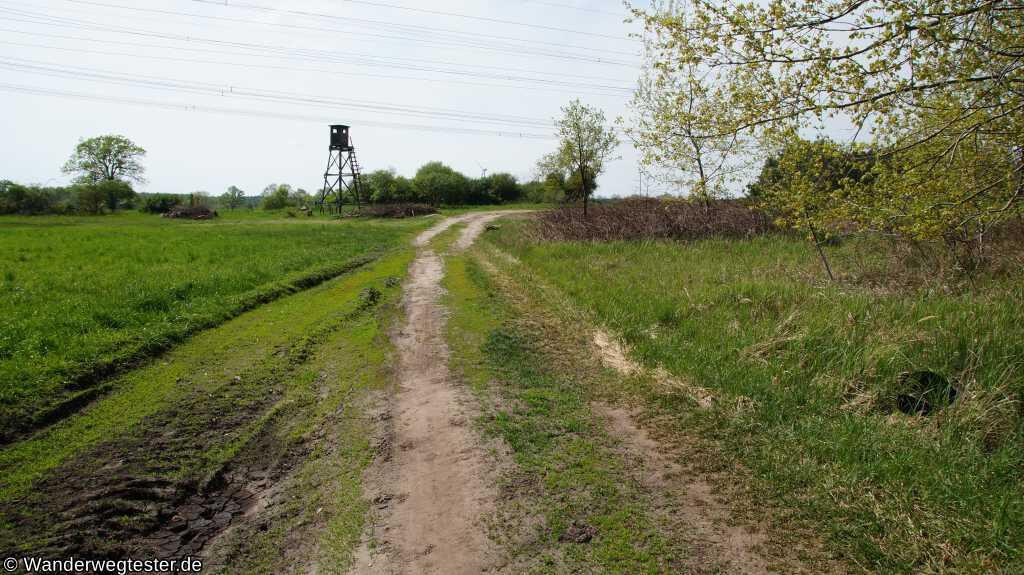 Abzweig auf dem Saalower Höllenbergweg