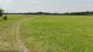 "Read more about the article Wanderung auf dem ""Salzweg"" bei Storkow"