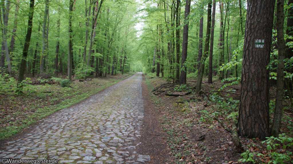 Wanderweg Britz-Chorin