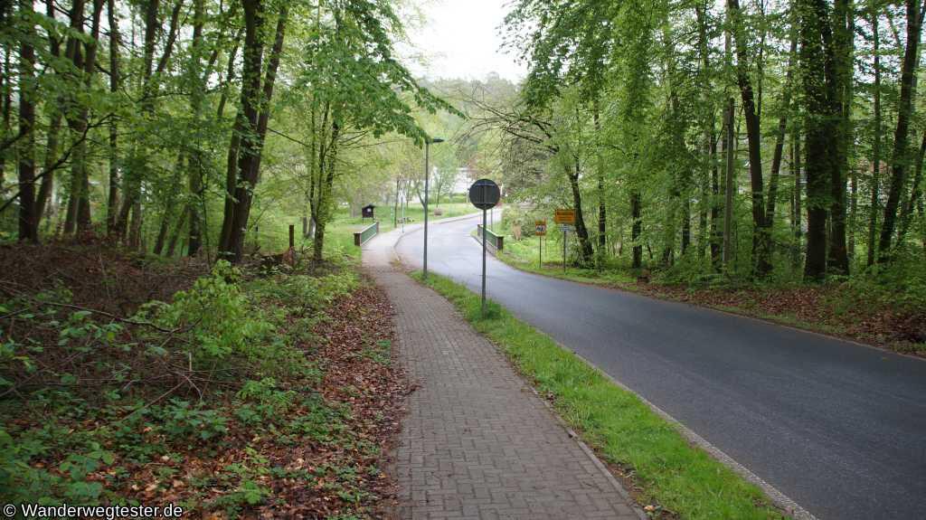 Waldstraße in Neuehütte
