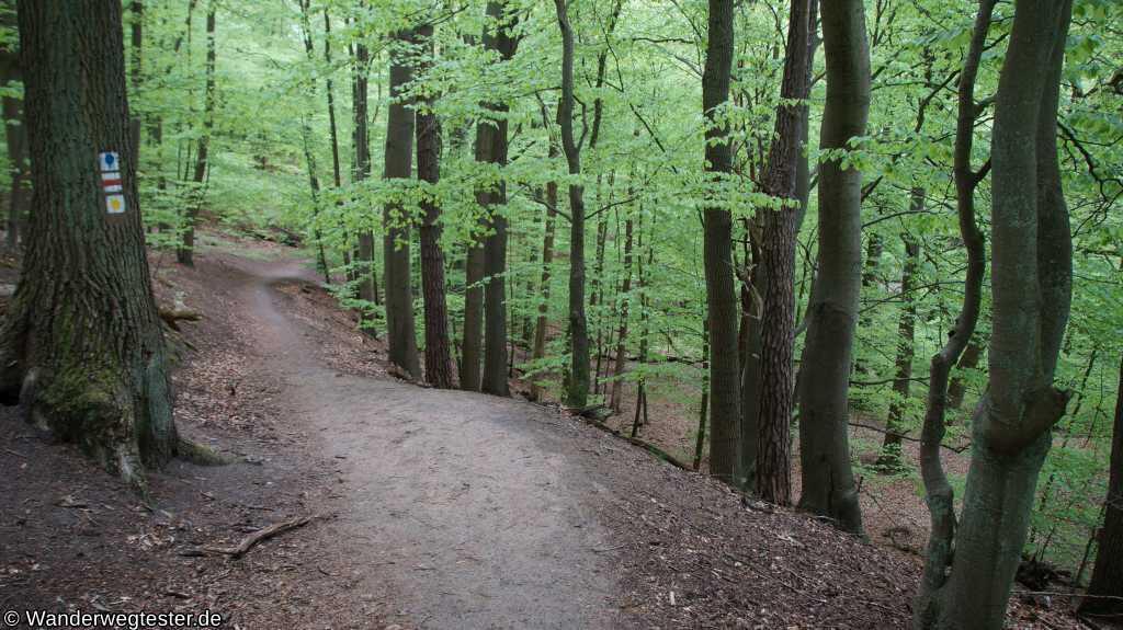 Wanderweg am Werbellinkanal